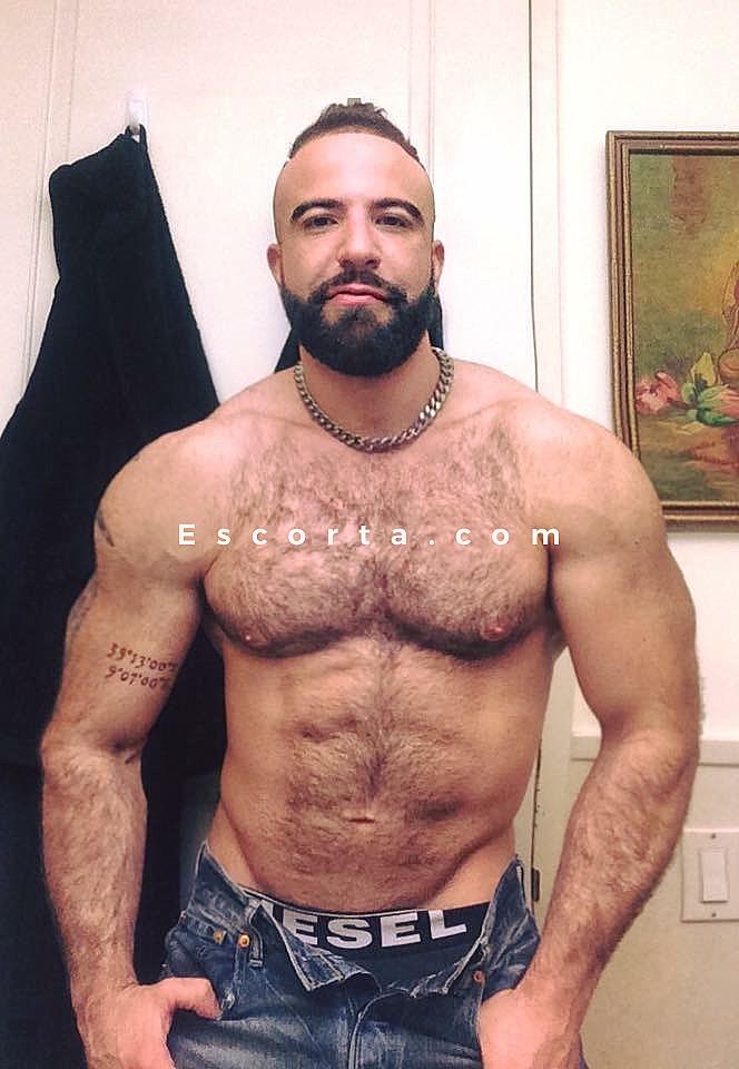 incontri escort veneto gay annunci cagliari