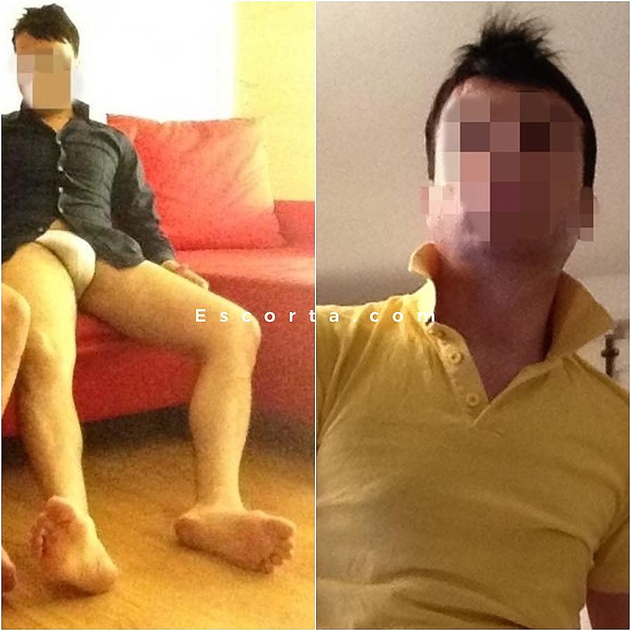 gay escort messina gay escort catania