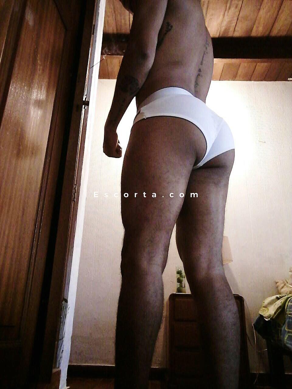 escort uomini gay escort di colore a torino
