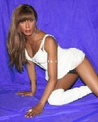 cindy brown - Trans escort Ferrara